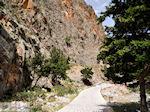 JustGreece.com Samaria gorge | Crete | Greece Photo 1 - Foto van JustGreece.com