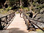 Samaria gorge | Crete | Greece Photo 24 - Photo JustGreece.com