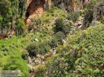 JustGreece.com Traditional Village Topolia | Chania Crete | Chania Prefecture 26 - Foto van JustGreece.com