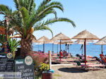 Agia Galini Crete - Photo 108 - Photo JustGreece.com