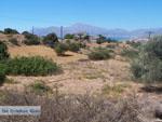 Near de camping of Komos | Crete | Greece  Photo 1 - Photo JustGreece.com