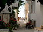 Paleochora Crete   Chania Prefecture   Greece   Greece  Photo 18 - Photo JustGreece.com