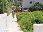 Vori Heraklion Crete - Photo 10 - Photo JustGreece.com