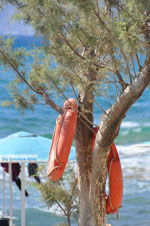 Kalamaki Crete | South Crete | Greece  Photo 29 - Photo JustGreece.com