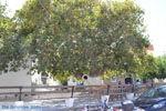 JustGreece.com On the way to Triopetra to Akoumia   South Crete   Greece  Photo 5 - Foto van JustGreece.com