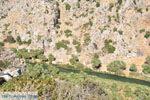 JustGreece.com Preveli | South Crete | Greece  Photo 14 - Foto van JustGreece.com