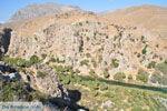 Preveli | South Crete | Greece  Photo 19 - Photo JustGreece.com