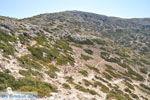 From Matala to Red Beach | South Crete | Greece  Photo 19 - Photo JustGreece.com