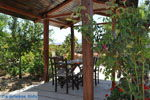 JustGreece.com Villa Kapariana near Mires | South Crete | Greece  Photo 3 - Foto van JustGreece.com
