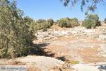 Komos | South Crete | Greece  Photo 39 - Photo JustGreece.com