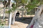 Monastery Odigitria | South Crete | Greece  Photo 1 - Photo JustGreece.com