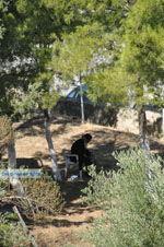 Monastery Odigitria | South Crete | Greece  Photo 25 - Photo JustGreece.com