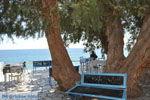 JustGreece.com Lendas (Lentas) | South Crete | Greece  Photo 2 - Foto van JustGreece.com