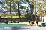 JustGreece.com Panagia Kaliviani near Mires| South Crete | Greece  Photo 4 - Foto van JustGreece.com