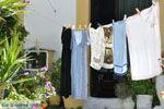 JustGreece.com Kamilari | South Crete | Greece  Photo 20 - Foto van JustGreece.com