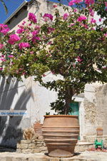 Kamilari | South Crete | Greece  Photo 39 - Photo JustGreece.com