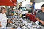JustGreece.com Timbaki | South Crete | Greece  Photo 13 - Foto van JustGreece.com