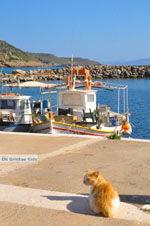 JustGreece.com Agia Pelagia | Kythira | Greece  Photo 8 - Foto van JustGreece.com