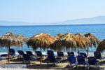 Agia Pelagia | Kythira | Greece  Photo 14 - Photo JustGreece.com