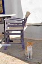 Avlemonas Kythira | Ionian Islands | Greece | Greece  7 - Photo JustGreece.com