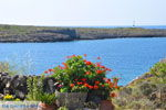 JustGreece.com Avlemonas Kythira | Ionian Islands | Greece | Greece  15 - Foto van JustGreece.com