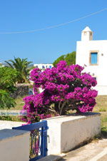 JustGreece.com Avlemonas Kythira | Ionian Islands | Greece | Greece  28 - Foto van JustGreece.com