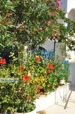 Avlemonas Kythira | Ionian Islands | Greece | Greece  30 - Photo JustGreece.com