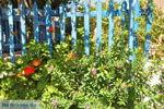 JustGreece.com Avlemonas Kythira | Ionian Islands | Greece | Greece  39 - Foto van JustGreece.com