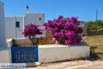 JustGreece.com Avlemonas Kythira | Ionian Islands | Greece | Greece  77 - Foto van JustGreece.com