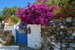 JustGreece.com Near the bronnen of Karavas | Kythira | Photo 8 - Foto van JustGreece.com