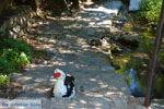 JustGreece.com Near the bronnen of Karavas | Kythira | Photo 17 - Foto van JustGreece.com