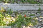 Karavas Kythira | Ionian Islands | Greece | Greece  Photo 15 - Photo JustGreece.com
