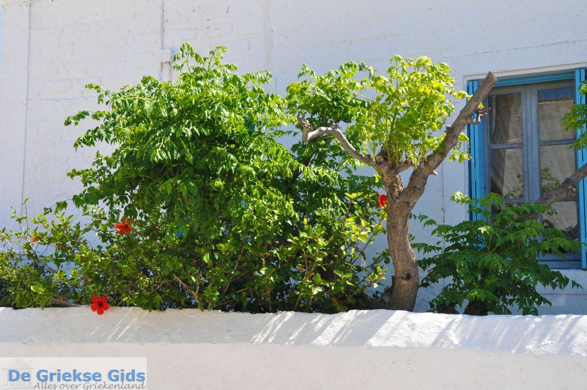 Photos Of Kythira Town Kythira Pictures Kythira Town Greece