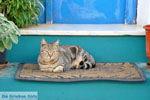 Kythira town (Chora) | Greece | Greece  40 - Photo JustGreece.com