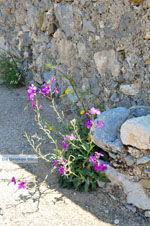 Kythira town (Chora)   Greece   Greece  93 - Photo JustGreece.com