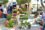 JustGreece.com Markt Potamos Kythira | Ionian Islands | Greece | Greece  Photo 4 - Foto van JustGreece.com