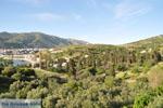 Andros town (Chora) | Greece  | Photo 002 - Photo JustGreece.com