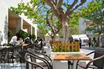 Andros town (Chora) | Greece  | Photo 077 - Photo JustGreece.com