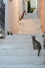 Stenies   Island of Andros   Greece  Photo 7 - Photo JustGreece.com