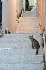 Stenies | Island of Andros | Greece  Photo 8 - Photo JustGreece.com