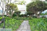 Andros town (Chora) | Greece  | Photo 129 - Photo JustGreece.com