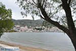 JustGreece.com Batsi | Island of Andros | Greece  | Photo 9 - Foto van JustGreece.com