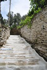JustGreece.com Batsi | Island of Andros | Greece  | Photo 37 - Foto van JustGreece.com