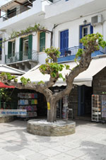 JustGreece.com Batsi | Island of Andros | Greece  | Photo 50 - Foto van JustGreece.com