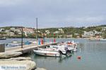 Batsi | Island of Andros | Greece  | Photo 59 - Photo JustGreece.com