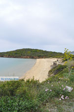 JustGreece.com beach near Batsi | Island of Andros | Greece  | Photo 6 - Foto van JustGreece.com