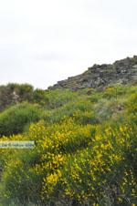JustGreece.com To the monastery of Panachrantou | Island of Andros | Greece  006 - Foto van JustGreece.com