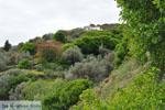 JustGreece.com To the monastery of Panachrantou | Island of Andros | Greece  010 - Foto van JustGreece.com