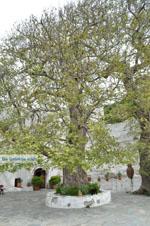 Panachrantou monastery | Island of Andros | Greece  | Photo 18 - Photo JustGreece.com