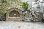 JustGreece.com Panachrantou monastery | Island of Andros | Greece  | Photo 19 - Foto van JustGreece.com